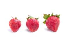 Three Ripe Strawberries Stock Image