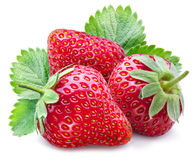 Three ripe strawberries with leaves. Stock Photos