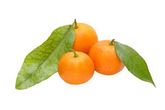 Three ripe tangerine with green leafes.Isolated. Stock Photography