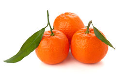 Three ripe tangerines Royalty Free Stock Photos