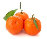 Three ripe tangerines Stock Photography
