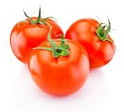 Three ripe tomatoes  on white background. Three ripe tomatoes  on a white background royalty free stock photos