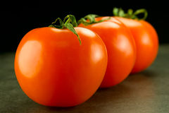 Three ripe tomatoes in a row. On a black light blue Stock Photos