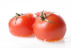 Three ripe tomatoes in water Royalty Free Stock Photography