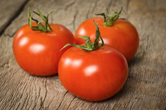 Three ripe tomatoes Royalty Free Stock Photo