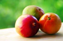 Three ripe tropical fruit. Mango Royalty Free Stock Photos