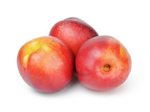 Three ripe whole nectarines Royalty Free Stock Image
