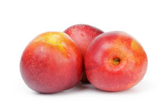 Three ripe whole nectarines Royalty Free Stock Images