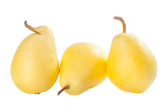 Three ripe yellow pears Royalty Free Stock Image