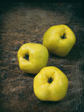 Three ripe yellow quince on a wooden background. Three ripe yellow quince on dark wooden background Stock Photography