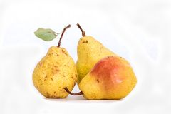 Three ripe yellow skinned pears, slightly imperfect fresh organic beautiful studio shot Bartlett pear with stem and green leaf. Three ripe yellow skinned pears stock photo