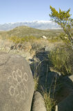 Three Rivers Petroglyph National Site, a (BLM) Bureau of Land Management Site, features more than 21,000 Native American Indian pe. Troglyphs and examples of Royalty Free Stock Image