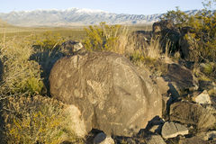 Three Rivers Petroglyph National Site, a (BLM) Bureau of Land Management Site, features more than 21,000 Native American Indian pe. Troglyphs and examples of Royalty Free Stock Photos