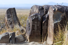 Three Rivers Petroglyph Site Royalty Free Stock Photos