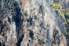 Three Rock climbers on Railay cliff, Krabi Thailand Royalty Free Stock Image