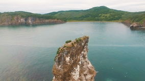 Three rocks in the ocean. Rock in the sea. Birds on the coast of the island in the sea. wild nature stock footage