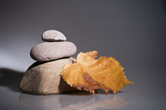 Three rocks and yellow leave Royalty Free Stock Image