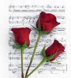 Three Rose Music