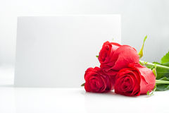 Three roses with blank paper card Royalty Free Stock Photo