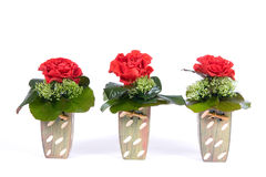 Three roses in bowls. Arrangement with red rose in flower vases stock photos