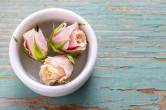 Three roses in ceramic bowl Stock Photography