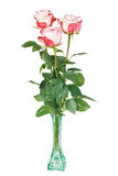 Three roses in glass vase. Three white and pink roses in green glass vase on white background Royalty Free Stock Photos