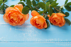 Three roses on the table Stock Photos