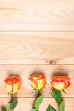 Three roses on a wooden boards and copy space Royalty Free Stock Photos