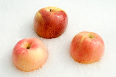 Three rosy apples on the white snow Stock Photo