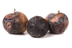 Three rotten apple isolated on a white background Stock Photo