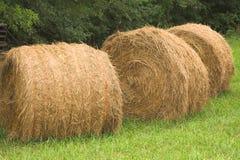 Three Round Hay Bales Stock Photography