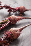 Three in a row organic beets. Freshly harvested organic beets three in a row Stock Photography