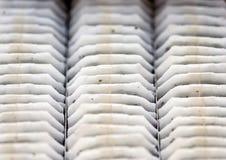 Macro Closeup Tea Bags in Line Pattern stock photo