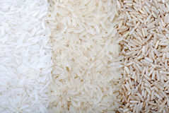 Three rows of rice varieties Royalty Free Stock Image