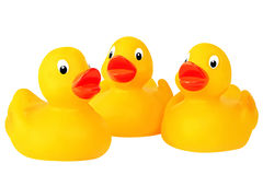 Three Rubber Ducks Royalty Free Stock Image