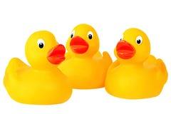 Three Rubber Ducks Royalty Free Stock Image