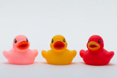 Three Rubber Ducks in Different Colors Stock Images