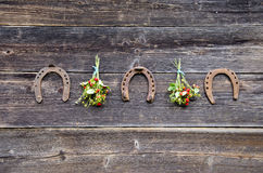 Three rusted horseshoe and wild strawberry bunch on wall Stock Photos
