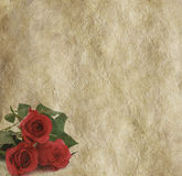 Three rustic red roses on parchment background Royalty Free Stock Photos
