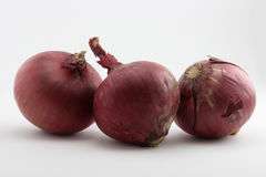 Three rustic style onion bulbs Stock Photography
