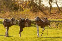Three saddles in a row on the beam. Autumn in Bieszczady mountain royalty free stock image