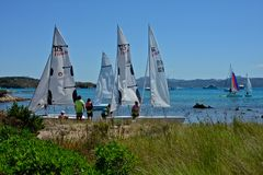 Three sailing boats with some people making sailing school. Surrounded by nature Stock Images