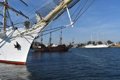Three Sailing ships in port of Gdynia royalty free stock photography