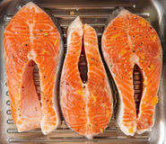 Three salmon steaks prepared for frying on grill pan. Three marinated salmon steaks prepared for frying on grill pan Royalty Free Stock Image