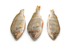 Three salted fish Royalty Free Stock Photography