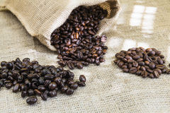 Three samples pure Arabica coffee beans of various origins. And different roasting on burlap Royalty Free Stock Images