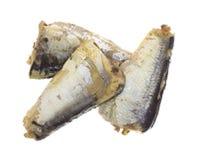 Three Sardines Top View Stock Photos