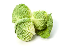 Three savoy cabbages Stock Image