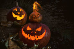 Three scary Halloween Jack O Lantern pumpkin Royalty Free Stock Image