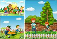 Three scenes with family doing gardening. Illustration Stock Photography